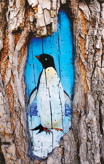 图为王月公益团队里的一位绘画者在一棵大树的树洞上绘画的企鹅.图片