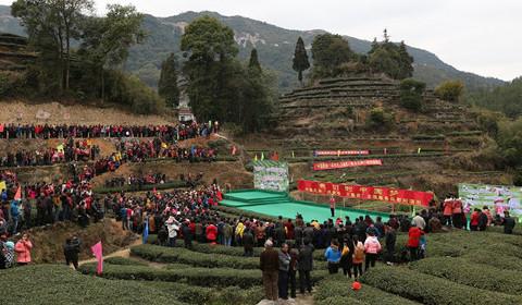 中國民協組織文藝志願服務 歡樂送到廈門茶山