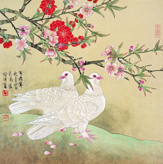 和平鸽图片手绘工笔