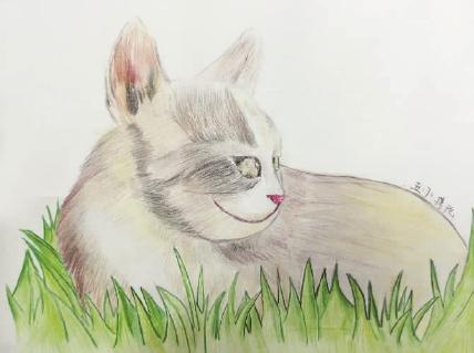 小学生喜欢小动物,因此画笔下的动物别具情韵.